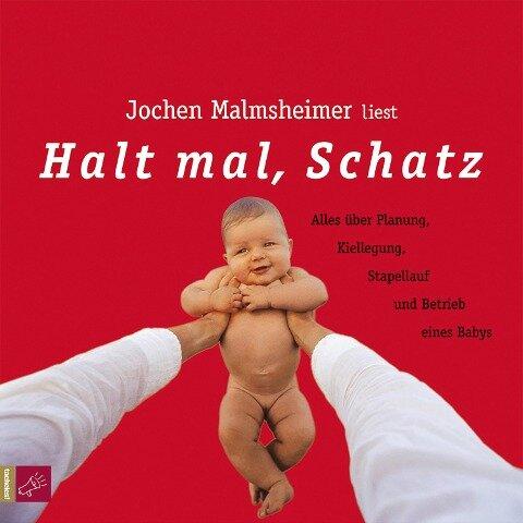 Halt mal, Schatz - Jochen Malmsheimer