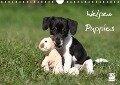 Welpen - Puppies (Wandkalender 2019 DIN A4 quer) - Jeanette Hutfluss