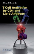 T Cell Activation by CD1 and Lipid Antigens -