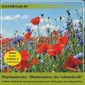 """Phantasiereise """"Blumenwiese der Lebenskraft"""" -"""