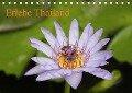Erlebe Thailand (Tischkalender 2019 DIN A5 quer) - Pia Sophie Und Thomas Völcker