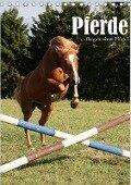 Pferde ... fliegen ohne Flügel (Tischkalender 2017 DIN A5 hoch) - N N
