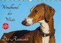 Windhund der Wüste - Der Azawakh (Wandkalender 2018 DIN A3 quer) - Sigrid Starick