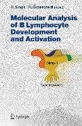 Molecular Analysis of B Lymphocyte Development and Activation -