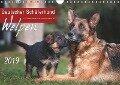 Deutscher Schäferhund - Welpen / CH-Version (Wandkalender 2019 DIN A4 quer) - Petra Schiller