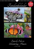 Tropische Falter in Schmetterlings-Häusern (Wandkalender 2017 DIN A4 hoch) - Diana Schröder