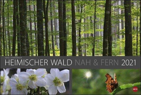 Wald nah und fern Edition - Kalender 2020