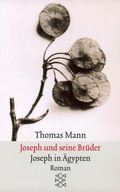 Joseph und seine BrüderIII. Joseph in Ägypten - Thomas Mann