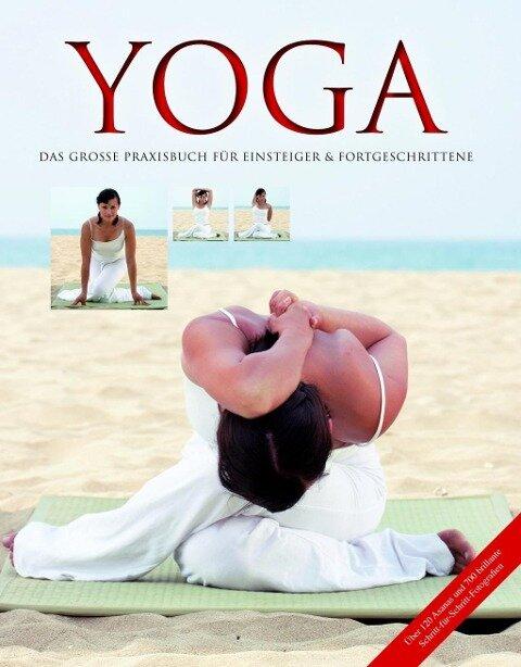 Yoga - Das große Praxisbuch für Einsteiger & Fortgeschrittene - Inge Schöps