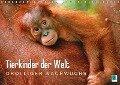 Tierkinder der Welt: Drolliger Nachwuchs (Wandkalender 2018 DIN A4 quer) - K. A. Calvendo