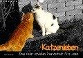 Katzenleben - Zwei Kater schließen Freundschaft fürs Leben (Wandkalender 2018 DIN A4 quer) - Jana Thiem-Eberitsch