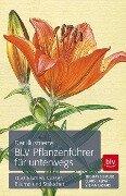 Der illustrierte BLV Pflanzenführer für unterwegs - Thomas Schauer, Claus Caspari, Stefan Caspari