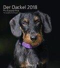 Der Dackel 2018 Wandkalender - Petra Spoerle-Strohmenger