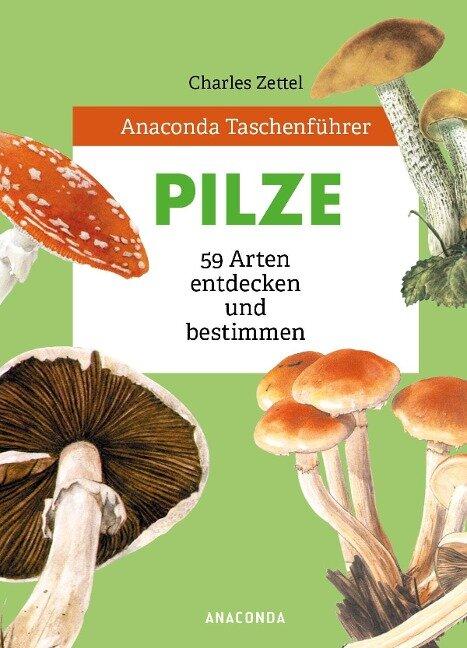 Anaconda Taschenführer Pilze - Charles Zettel