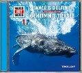 Was ist was Hörspiel-CD: Wale & Delfine/ Geheimnisse der Tiefsee - Manfred Baur