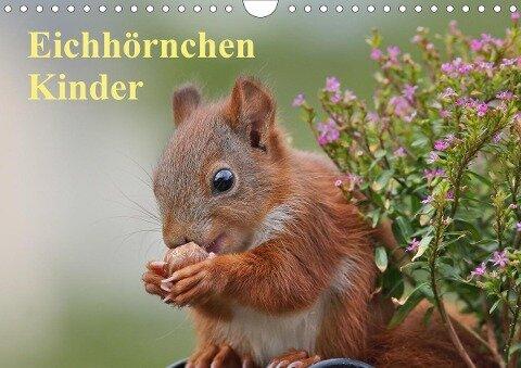 Eichhörnchen Kinder (Wandkalender 2021 DIN A4 quer) - Tine Meier