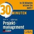 30 Minuten Projektmanagement - Yvette E. Hofmann