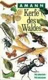 Kerfe des Waldes - Gottfried Amann