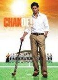 Chak De! - Ein unschlagbares Team -