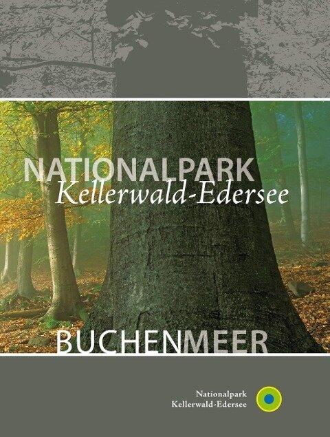 Nationalpark Kellerwald-Edersee. Buchenmeer