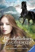 Pferdeflüsterer-Academy, Band 2: Ein geheimes Versprechen - Gina Mayer