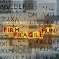 Firm Fragile Fun - Marnix Busstra