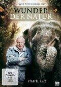 Wunder der Natur - David Attenborough - James Dorman