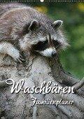 Waschbären Familienplaner (Wandkalender 2018 DIN A2 hoch) - Martina Berg