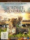 Wildlife Südafrika -