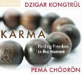 Karma: Finding Freedom in This Moment - Dzigar Rinpoche Kongtrul, Pema Chodron