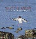Watt'n Meer... Die Natur an der Küste 2018 -