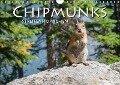 Chipmunks Streifenhörnchen (Wandkalender 2018 DIN A4 quer) - Robert Styppa