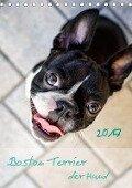 Boston Terrier der Hund 2017 (Tischkalender 2017 DIN A5 hoch) - Nailia Schwarz