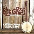 Bluegrass Greatest Hits - The Charles River Valley Boys