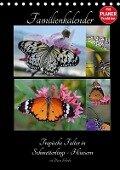 Tropische Falter in Schmetterlings-Häusern (Tischkalender 2017 DIN A5 hoch) - Diana Schröder