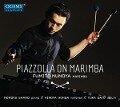 Piazzolla on Marimba - Fumito Nunoya