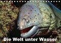 Die Welt unter Wasser (Tischkalender 2018 DIN A5 quer) - Dieter Gödecke