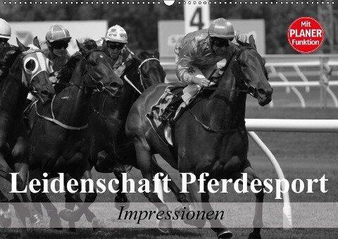 Leidenschaft Pferdesport - Impressionen (Wandkalender 2018 DIN A2 quer) - Elisabeth Stanzer