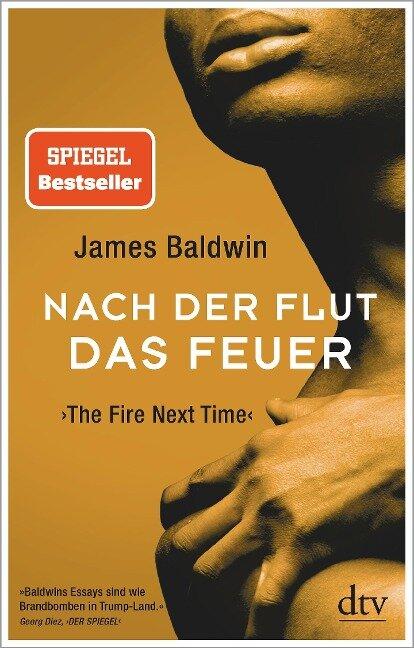 Nach der Flut das Feuer - James Baldwin