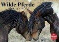 Wilde Pferde. Mustangs in USA (Wandkalender 2018 DIN A4 quer) Dieser erfolgreiche Kalender wurde dieses Jahr mit gleichen Bildern und aktualisiertem Kalendarium wiederveröffentlicht. - Elisabeth Stanzer