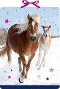 Wandkalender - Pferdefreunde im Schnee -