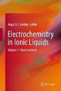 Electrochemistry in Ionic Liquids -
