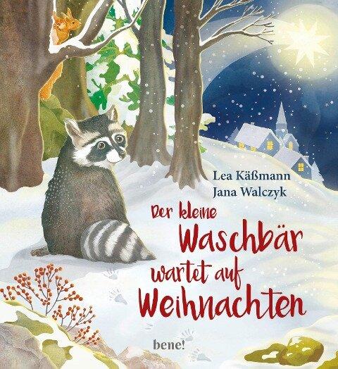 Der kleine Waschbär wartet auf Weihnachten - ein Bilderbuch für Kinder ab 2 Jahren - Lea Käßmann