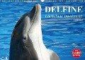 Delfine - Lächelnde Intelligenz (Wandkalender 2018 DIN A3 quer) Dieser erfolgreiche Kalender wurde dieses Jahr mit gleichen Bildern und aktualisiertem Kalendarium wiederveröffentlicht. - Elisabeth Stanzer
