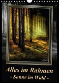 Alles im Rahmen - Sonne im Wald / Planer (Wandkalender 2017 DIN A4 hoch) - Peter Roder