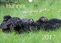 Hühner im eigenen Garten (Wandkalender 2017 DIN A4 quer) - Nicole Stephan
