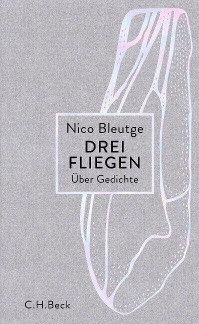 Drei Fliegen - Nico Bleutge