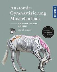 Anatomie, Gymnastizierung, Muskelaufbau - Gillian Higgins