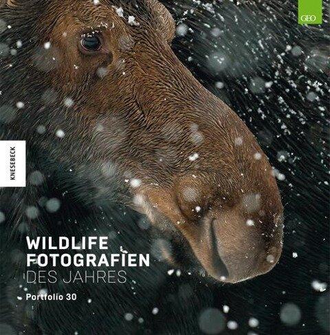 Wildlife Fotografien des Jahres - Portfolio 30 -