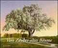 Vom Zauber alter Bäume 2019 - Wandkalender -